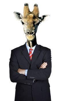 Business man dressed as giraffe