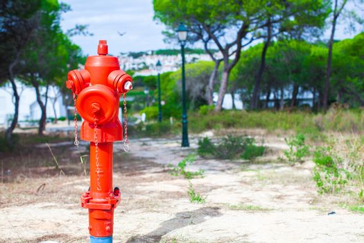 Red Fire hydrant on nature in Europe