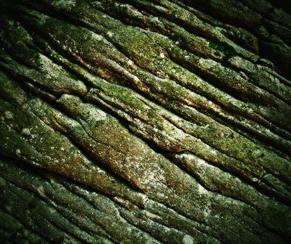 old wrinkled sandstone