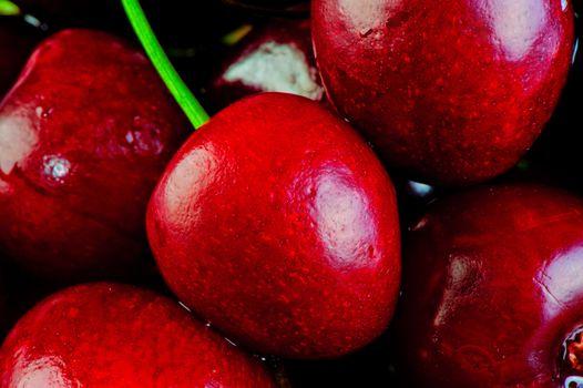 many goschnoy ripe cherries macro