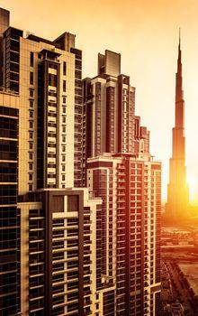 Dubai downtown in sunset