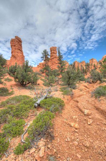 Bryce Canyon entry