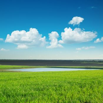 green lanscape with pond under blue sky
