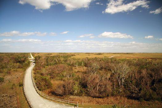 Road in Everglades
