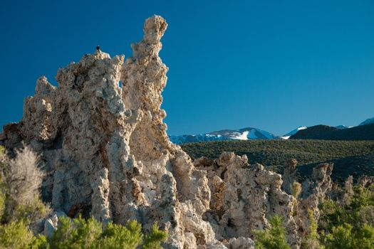 Rock formations on Mono Lake