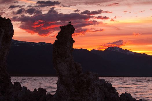 Silhouette of rock formations at dusk