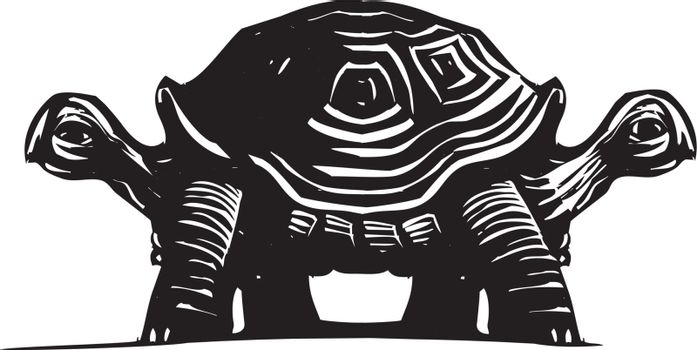 Woodcut style image of a turtle with two heads.