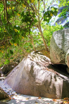 Big smooth rocky coast on Seychelles