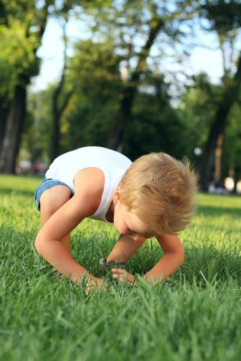Little boy looking for lost thing in the grass