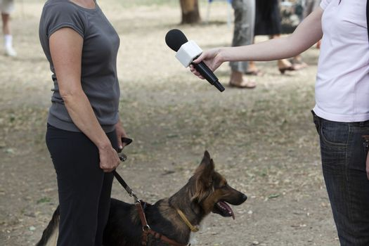 Interview with dog owner