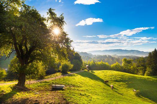 Idyllic countryside site, Alps, Slovenia, Europe.