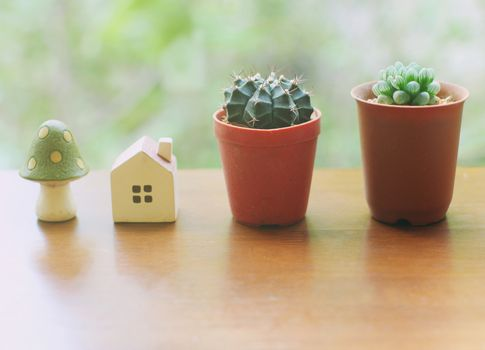 Cactus with small house and mushroom for decorated, retro filter