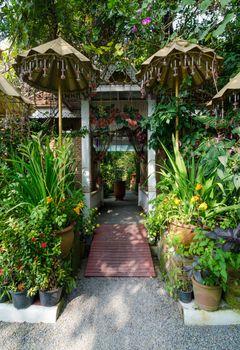 Natural gate in botanic park