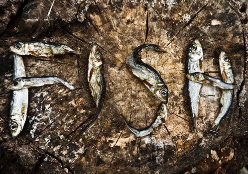 Small dried fishes forming the word fish on a tree trunk