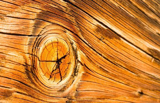 Lumber Gnarled Knotty Wood Lumber Plank Macro Burnt Nail
