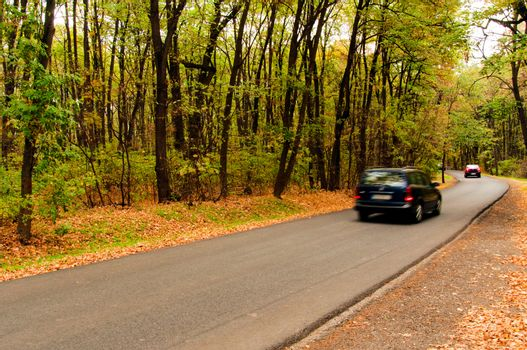 Cars with blurred motion on the forest road