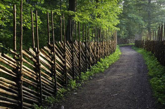 Path in a countryside along a wooden fence, a close up