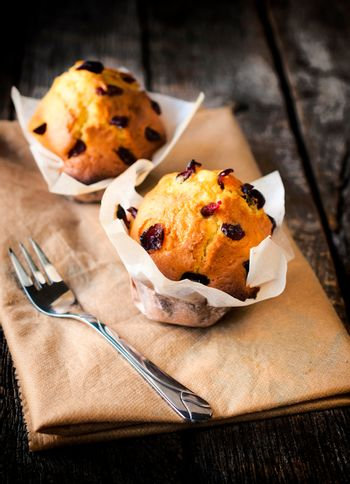 Dried cranberry muffins