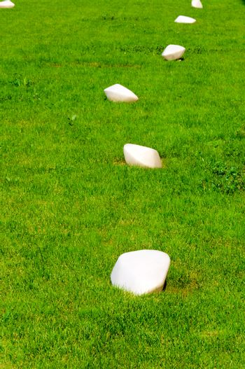 lamps on the grass