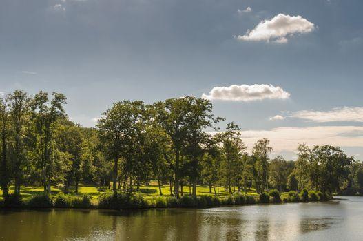 Pond in a park, spring season
