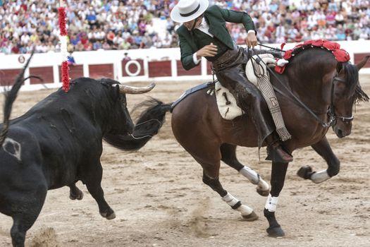 Spanish bullfighter on horseback Diego Ventura bullfighting on horseback