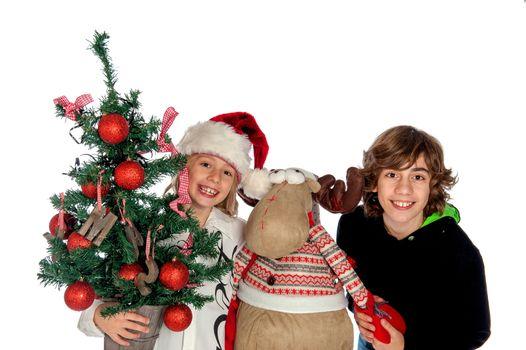 Reindeer and boys
