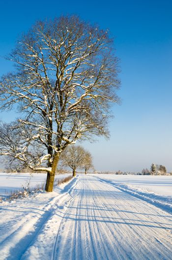 Winter landscape with road to a countryside