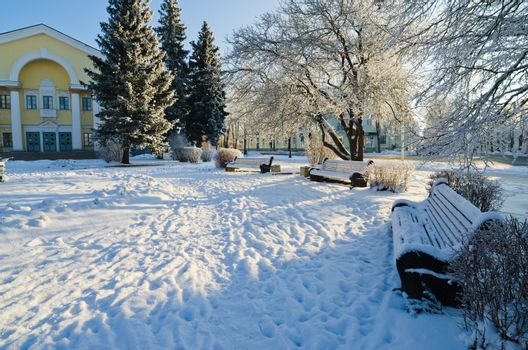 Park in Sillam??e sunny frosty day.
