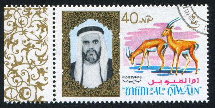 Sheikh and Antelope