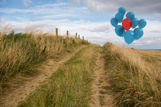 Balloons above sand dunes