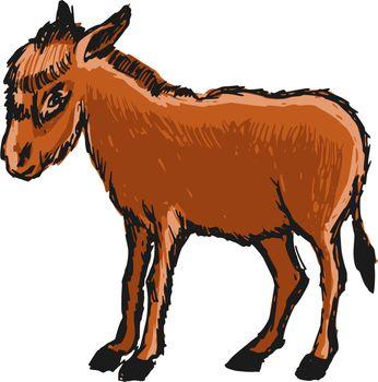 hand drawn, cartoon, sketch illustration of donkey