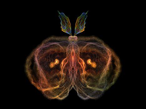 Shining Butterfly