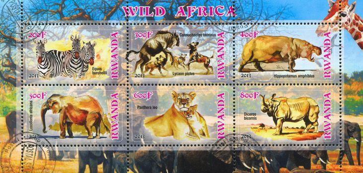 RWANDA - CIRCA 2013: stamp printed by Rwanda, shows african animals, circa 2013