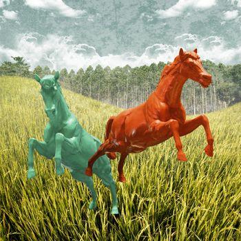 Horse running in rice field