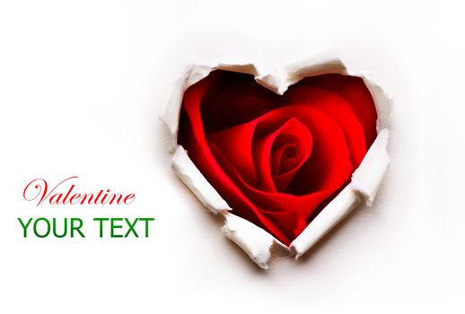 Paper Valentines Heart with Red Rose Flower inside