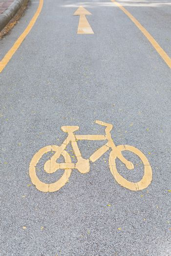 Bicycle Lane in yellow color