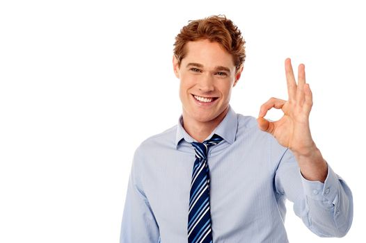 Male executive showing okay sign