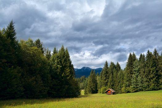 little hut on meadow in coniferous alpine forest