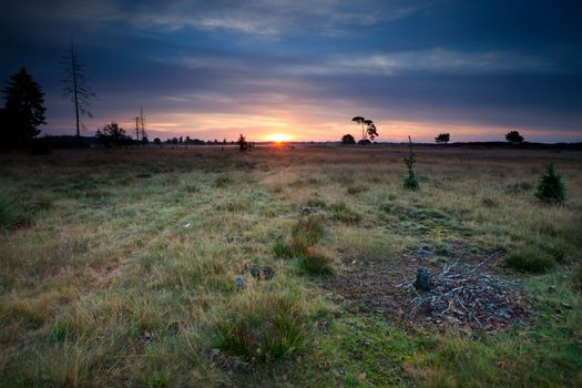 sunrise over dunes and meadows