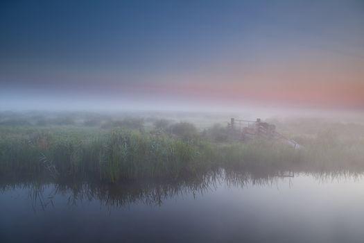tranquil foggy morning in Dutch farmland