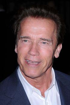 Governor Arnold Schwarzenegger /ImageCollect