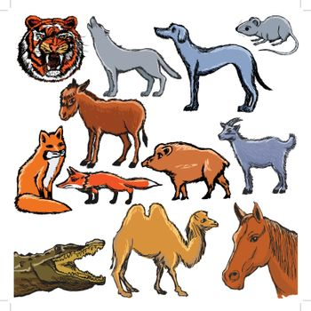 set of sketch illustrations of the animals