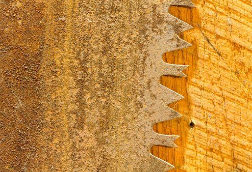 Macro of teeth of rusty large circular saw blade