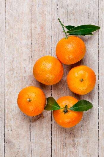 five tangerines with leaves