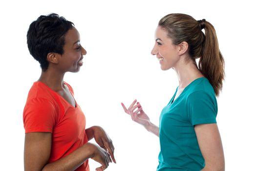 Pretty women having a discussion