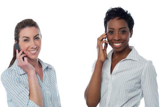 Female executives using a mobile phone