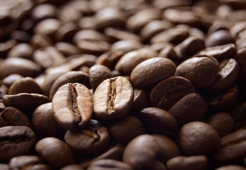 Heap of Fragrant Roasted Brown Coffee Beans