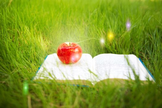 fairy book and apple