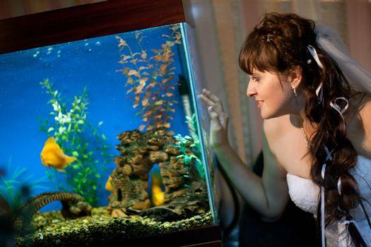 bride watches fishes in aquarium