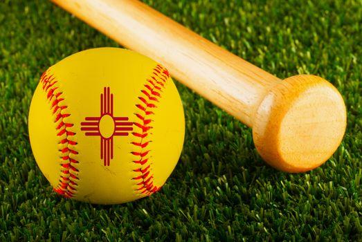 New Mexico Baseball